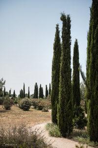 Zypern Botanischer Garten