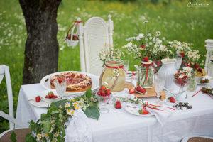 Erdbeere und Holunder