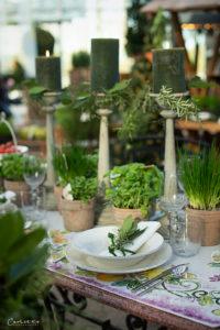 Frühlingsfrischer Kräutergenuss - Experteninterview